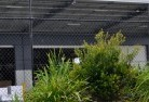Abergowrie Wire fencing 20